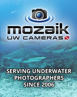 Mozaik Underwater Cameras